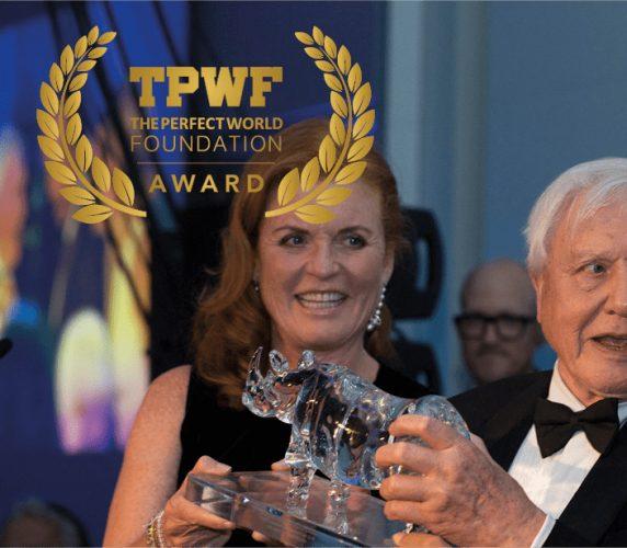 TPWF Award Bankett-Konsert_event